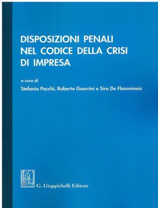 Immagine di Disposizioni penali nel codice della crisi di impresa