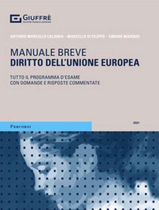 Immagine di Diritto dell'Unione europea. Tutto il programma d'esame con domande e risposte commentate.