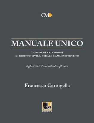 Immagine di Manuale unico. I fondamenti comuni di diritto civile, penale e amministrativo. Approccio critico e interdisciplinare