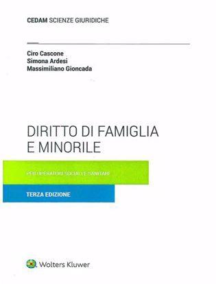 Immagine di Diritto di famiglia e minorile. Per operatori sociali e sanitari