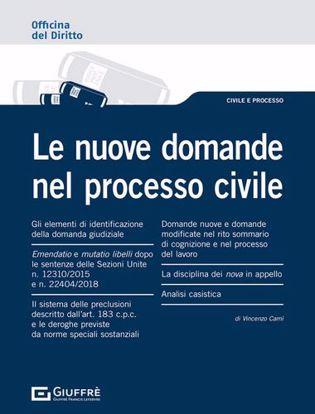 Immagine di Le nuove domande nel processo civile