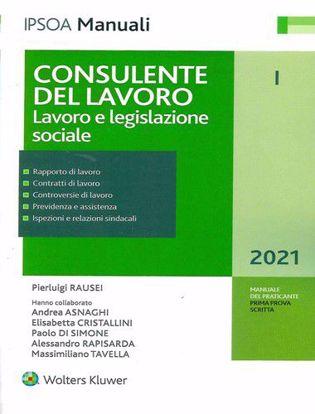 Immagine di Consulente del lavoro vol.1 Lavoro e legislazione sociale