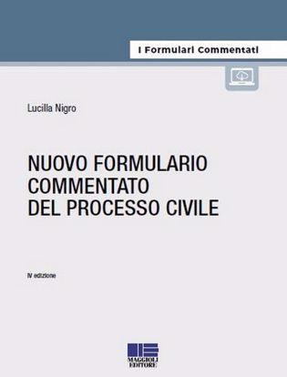 Immagine di Nuovo formulario commentato del processo civile