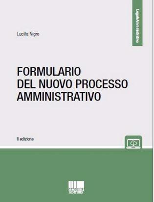 Immagine di Formulario del nuovo processo amministrativo