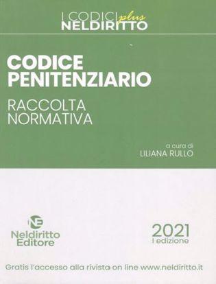 Immagine di Codice penitenziario. Raccolta normativa. Con Contenuto digitale per accesso on line
