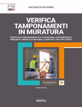 Immagine di Verifica tamponamenti in muratura. Con Contenuto digitale per download e accesso on line