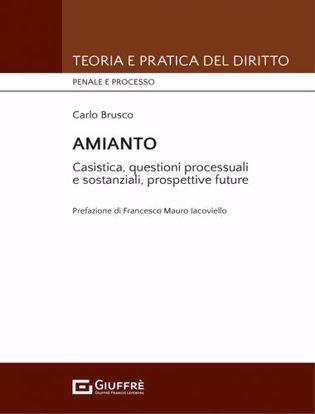 Immagine di Amianto. Casistica, questioni processuali e sostanziali, prospettive future