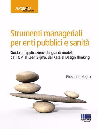 Immagine di Strumenti manageriali per enti pubblici e sanità