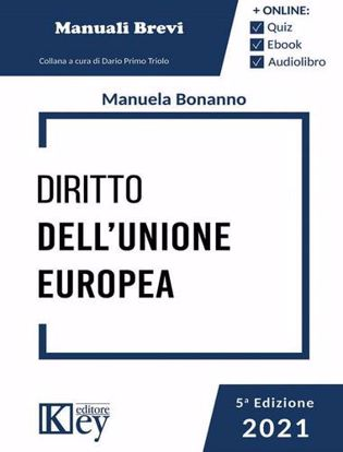 Immagine di Diritto dell'Unione Europea