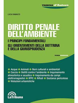 Immagine di Diritto penale dell'ambiente