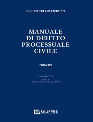 Immagine di Manuale di Diritto Processuale Civile. Principi