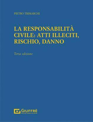 Immagine di Responsabilità Civile: Atti Illeciti, Rischio, Danno