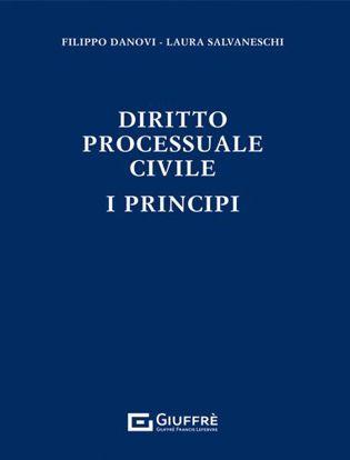 Immagine di Diritto processuale civile. I principi