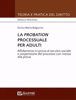 Immagine di La Probation processuale per adulti. Affidamento in prova al servizio sociale e sospensione del processo con messa alla prova