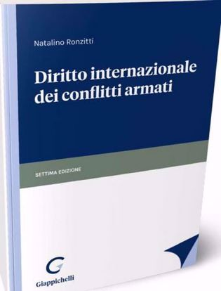 Immagine di Diritto internazionale dei conflitti armati