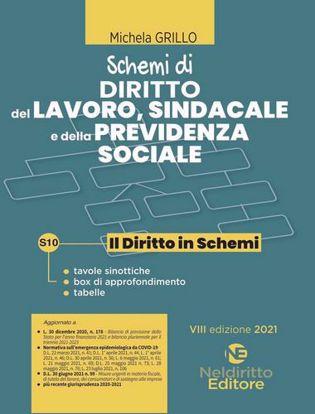 Immagine di Schemi di diritto del lavoro, sindacale e della previdenza sociale