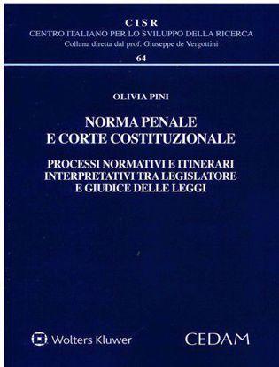 Immagine di Norma penale e corte costituzionale