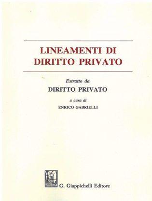 Immagine di Lineamenti diritto privato. Estratto
